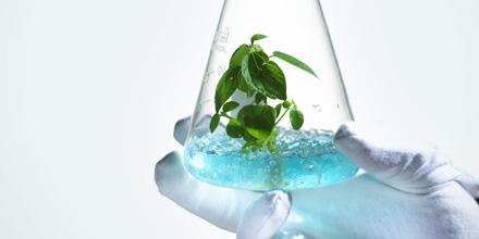 Qu est ce que la biotechnologie consulat g n ral de for Chambre de commerce francaise aux usa